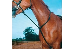 Shires Equestrian - Blenheim Standing Martingale - Havana - Size: Pony