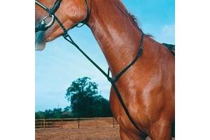 Shires Equestrian - Blenheim Standing Martingale - Havana - Size: Pony