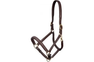 LeMieux Embroidered Leather Headcollar Brown