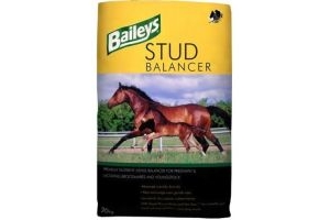 Baileys Stud Horse Balancer 20kg