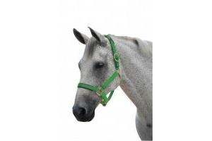 Roma Brights Breakaway Headcollar Aqua Pony