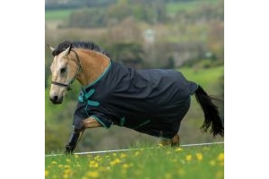 Horseware Amigo Hero ACY Original 0g Lightweight Standard Neck Turnout Rug Black/Teal/Dark Cherry