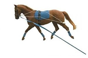 Kincade Lunging Training System - One Size