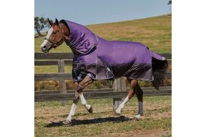 WeatherBeeta ComFiTec Plus Dynamic 100g Light-Medium Weight Detach-A-neck Turnout Rug Purple/Black