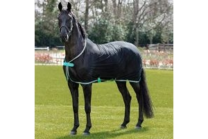 Horseware Amigo Net Cooler - Black/Teal & Dark Cherry