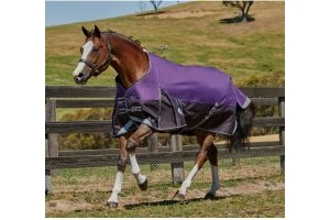 WeatherBeeta ComFiTec Plus Dynamic Wide 220g Medium Weight Standard Neck Turnout Rug Purple/Black
