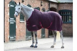 Weatherbeeta Waffle Cooler Standard Neck Rug Black / Boysenberry: 6ft 9