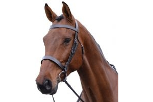 Kincade Hunt Cavesson Bridle Brown