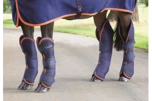 Shires Stylish Tough Shock Absorbing Arma Travel Boots [Navy/Orange, Pony]