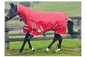 Weatherbeeta Comfitec Medium Classic Combo Neck Turnout Rug (6 ft 9) (Red/Silver/Navy)