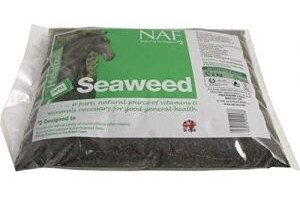 Natural Animal Feeds Naf Seaweed 2kg Refill - Clear, 2Kg Refill