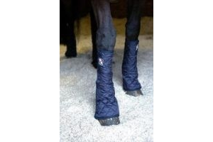 equilibrium Equi-Chaps Stable Chaps-Navy Large