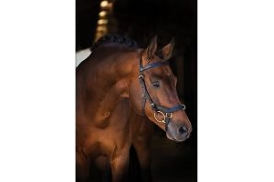 Horseware Rambo Micklem Deluxe Competition Letter English Leather Bridle, Farbe:black, Größe:L