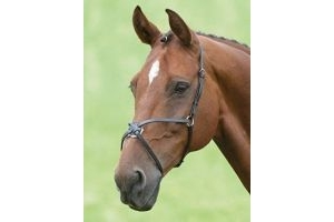 Shires Equestrian - Blenheim Mexican Noseband - Havana - Size: Pony by Shires