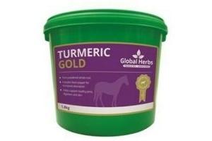 Global Herbs - Turmeric Gold - 1.8 kg