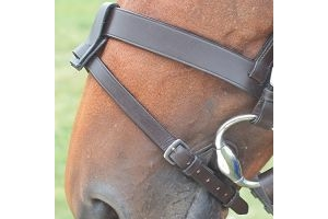 Shires Equestrian - Blenheim Flash Noseband Attachment - Havana - Size: Onesize