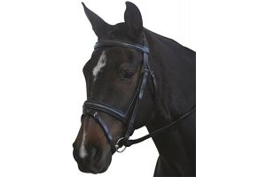 Kincade Padded Headpiece Flash Bridle Black Warmblood