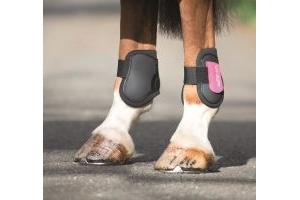 ARMA Rear Fetlock Boots (BLack/Purple, Horse)