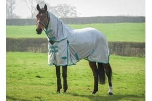 Weatherbeeta Comfitec Essential Mesh Combo Neck Fly Rug Grey/Blue/Green