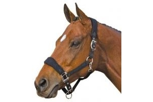 Roma Fleece Shaped Headcollar: Navy Blue: Pony by Roma F.C.