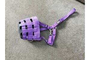 Roma Full Size / Cob Grazing Muzzle, Purple. Tried on but never used!