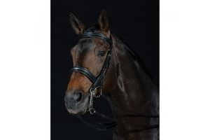 Collegiate Raised Patent Weymouth Bridle II