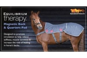 New Equilibrium Magnetic Therapy Back & Quarters Pad -  Next Day Delivery