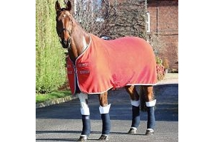 Shires Tempest Original Stable Sheet 5ft Red Navy Grey