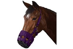 Roma Grazing Muzzle (Full) (Purple)