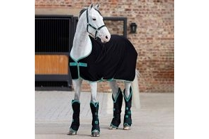 Amigo Horseware Jersey Horse Cooler Rug - Black/Teal/Dark Cherry: 6ft0