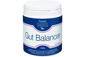 Protexin Gut Balancer Horse Supplement 400g