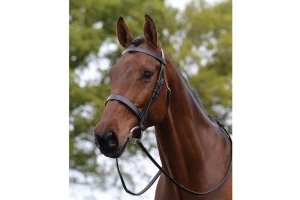 Kincade Hunt Cavesson Bridle II