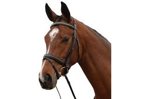 Kincade Padded Crystal Crank Flash Bridle - Black: Full