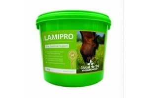 GLOBAL HERBS LAMINITIS PRONE POWDER 1kg nutrition supplement for horses