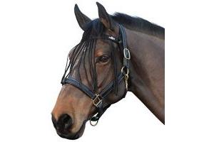 Saxon Fly Fringe Black Pony