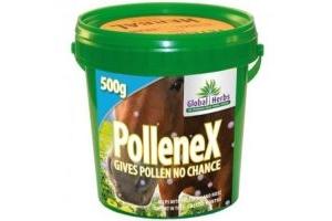 Global Herbs PollenEx 500g