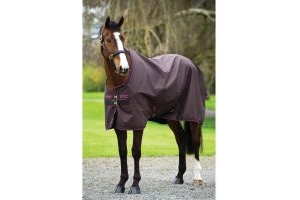Horseware Amigo Hero 6 50g Lite Weight Standard Neck Turnout Rug Chocolate/Raspberry