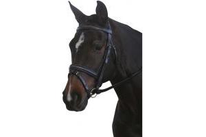 Kincade Padded Headpiece Flash Brisle
