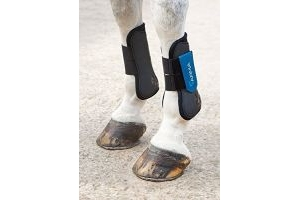 Shires Arma Tendon Boots - Black/Royal Blue: Full