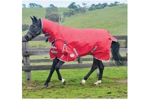 WeatherBeeta ComFiTec Classic 300g Heavyweight Combo Turnout Rug Red/Silver/Navy