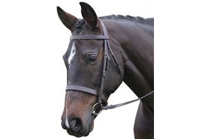 Kincade Hunt Leather Cavesson Bridle II (Full) (Black)