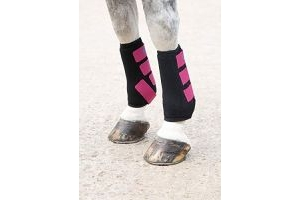 Shires ARMA Breathable Sports Exercise Boots Full Size Raspberry