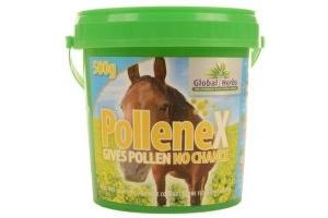 Global Herbs PollenEx Horse Supplement Powder - 500g
