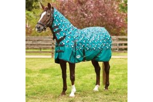 WeatherBeeta ComFiTec Essential 220g Medium Weight Combo Neck Turnout Rug Panda Print