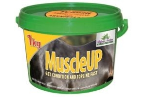 Global Herbs MuscleUp Horse Digestion Supplement x Size: 1 Kg