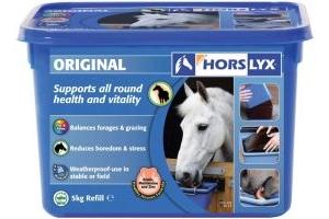 Horslyx Original Refill