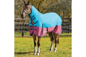 WeatherBeeta ComFiTec Classic 220g Medium Weight Combo Neck Turnout Rug Teal/Burgundy/Blue