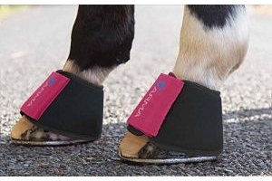 Shires Arma Neoprene Over Reach Boots - 1898, raspberry, Full