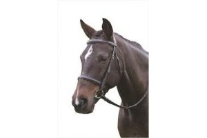Kincade Raised Cavesson Bridle with Reins-Black Full