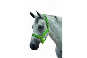 Roma Brights Pony/Horse Headcollar: Lime Green: Warmblood
